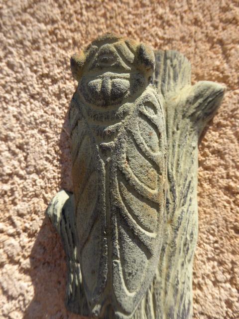 cicada in stone