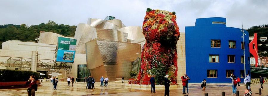 Puppy corrected Guggenheim