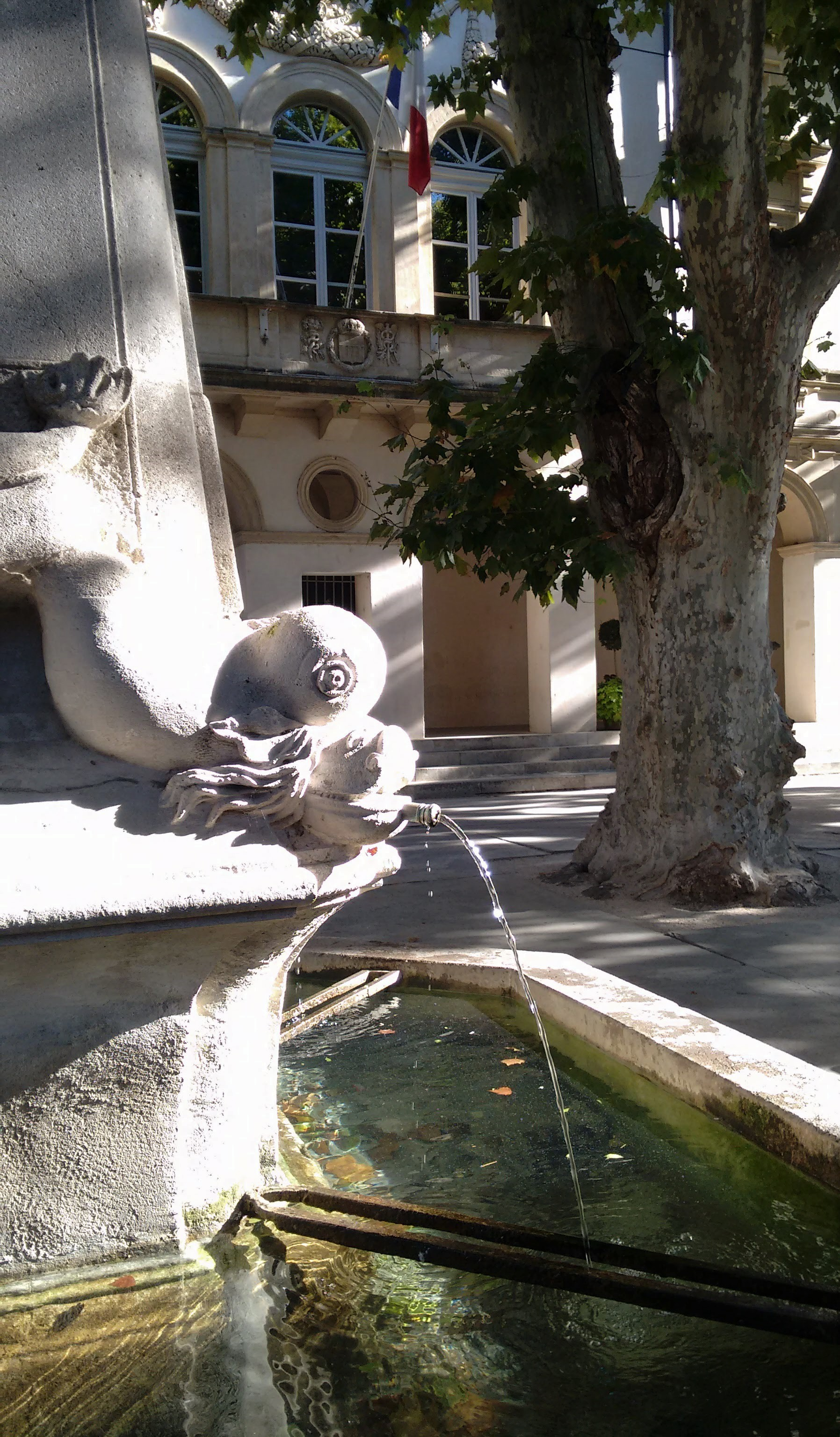 Four Dolfins Fountain